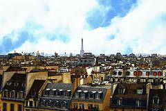 파리 - 플리커에서 가지고 온 이미지